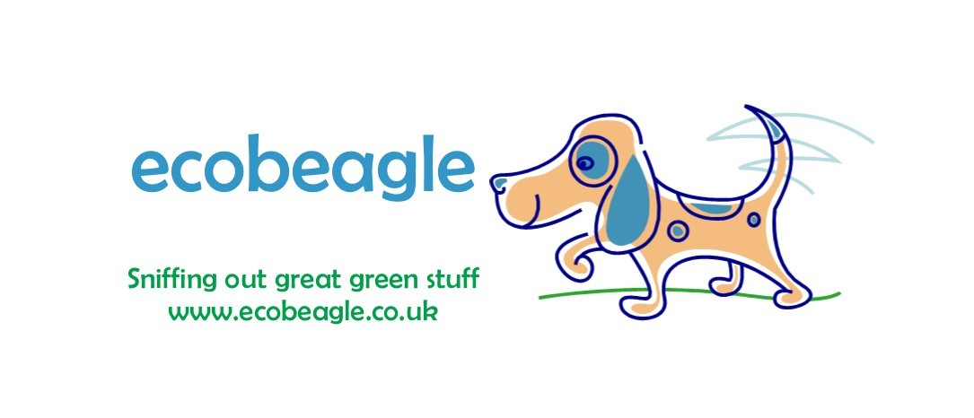 Eco Breagle Wide Logo